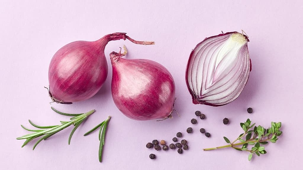 Are red onions keto-friendly? This is a question that many people on the Keto Diet have asked themselves. We are here to answer this question and help you make informed decisions about what foods can be eaten while on the diet.